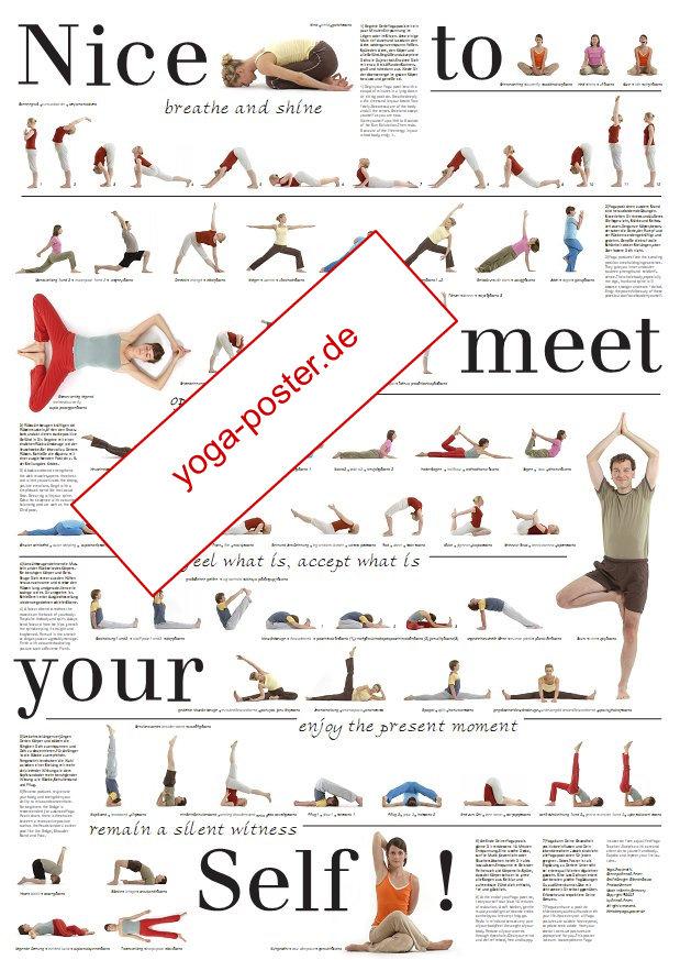 Yoga-Poster: Ein Yoga-Geschenk: A1-Yogaposter mit 69 Asanas für das Üben zu Hause